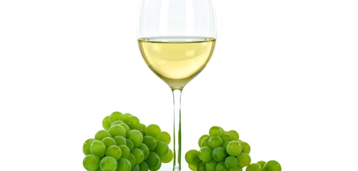 Bílé víno nebo klaret – naučíme vás rozdíl