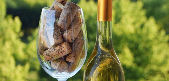Tokajské víno a jeho příběh