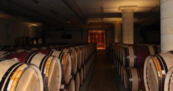 """Čeští vinaři prodávají tzv. """"nahá vína"""""""