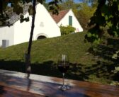Zweigeltrebe – modré víno